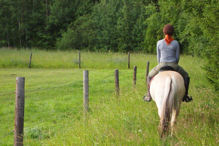 Activité équitation à Samoëns